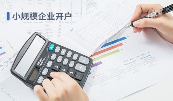 小规模记账(6个月付)
